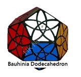 Bauhinia Dodecahedron Black Body
